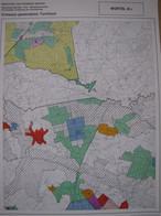 Wortel Ontwerp Gewestplan - Topographical Maps