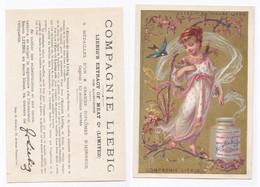 Chromo Liebig Girls In Branches (Femmes Avec Guirlandes De Fleurs) S94-a Hirondelle - Liebig