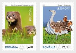 Roemenië / Romania - Postfris / MNH - Complete Set Europa, Bedreigde Dieren 2021 - Unused Stamps