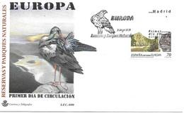 Chat Sauvage FDC 1999 Espagne Yvert 3196 - Raubkatzen