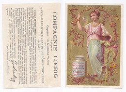 Chromo Liebig Girls In Branches (Femmes Avec Guirlandes De Fleurs) S94-e - Liebig