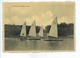 Lac National De Virelles Régates ( Voiliers ) - Chimay