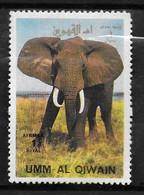 UMM AI QIWAIN   PA  * *  Elephants - Elephants