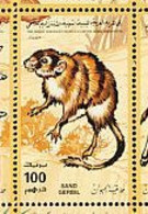 Libye. Libya. 1995  Gerbil. - Rodents