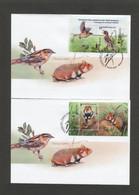 2021 Belarus №1412-1413 2 FDC EUROPE Endangered Species Of Wildlife. Hamster. Bird. Fauna - Unclassified