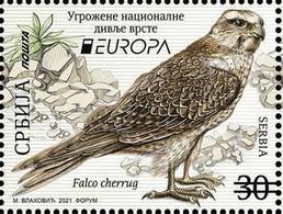 SERBIA 2021,NEW 12.05,EUROPA CEPT,ENDANGERED NATIONAL WILDLIFE,FAUNA,BIRDS,FALCO, MNH - Unclassified