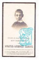 DP Foto - Student St.-Franciscus Xaverius - Walter Leonard Claeys 14j. ° Brugge 1908 † 1923 - Images Religieuses