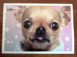 Puppies & Me! Panini  N. 34 Figurina Adesivo Sticker - Edición Italiana