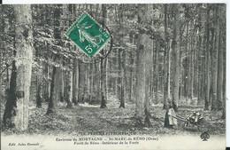 LE PERCHE PITTORESQUE - Environs De MORTAGNE - SAINT MARC DE RENO- Forêt De Reno- Intérieur De La Forêt - Altri Comuni