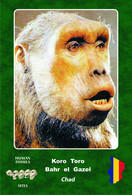 Set 3 Cartes Postales, Hommes Prehistoriques, Human Fossil Sites, Koro-Toro(Chad), Australopithecus Bahrelgazali - History