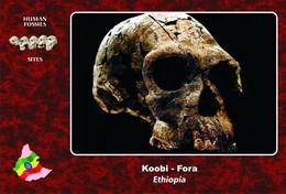 Set 3 Cartes Postales, Hommes Prehistoriques, Human Fossil Sites, Koobi-Fora (Ethiopia), Homo Habilis - History