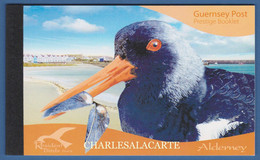 ALDERNEY AURIGNY 2009 COMPLETE PRESTIGE BOOKLET WADERS  SG ASB 19 - Alderney
