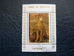 Big Cats (cats Of Prey) # Umm Al Qiwain 1972 Mini S/s # Used - Raubkatzen