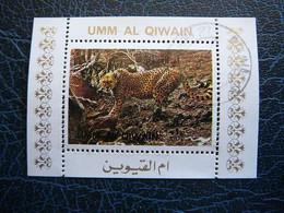 Big Cats (cats Of Prey) # Umm Al Qiwain 1972 Mini S/s #1 Used - Raubkatzen