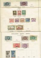 SENEGAL, Tunis,Mauritanie, HAITI,1906 Oblit.,*,( *) Maj.bonne Qualité, T Pages D'ancien Album. Intéressant - Verzamelingen