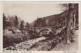 48  Marvejols  -  Le  Pont  Pessil - Marvejols