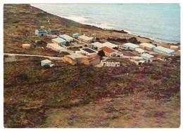 TERRES AUSTRALES ET ANTARTIQUES FRANCAISES - AMSTERDAM - La Base Martin De Viviès (carte Photo) - TAAF : Franse Zuidpoolgewesten