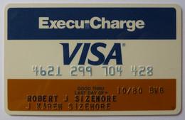 USA - Credit Card - VISA - Execu-Charge - Louisiana National Bank - Exp 10/80 - Used - Carte Di Credito (scadenza Min. 10 Anni)