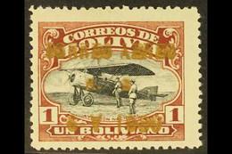 "1930 1b Red-brown & Black Air ""CORREO AEREO"" Overprint In BRONZE (METALLIC) INK (Scott C23, SG 240), Fine Mint, Very Fre - Bolivie"