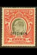"""1903 5s Black And Scarlet, Wmk Crown CC, Opt'd """"SPECIMEN"""", SG 23s, Very Fine Mint. For More Images, Please Visit Http:// - Montserrat"""