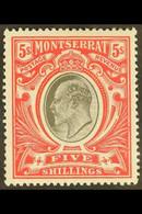 1903 5s Black And Scarlet, Ed VII, SG 23, Very Fine Mint. For More Images, Please Visit Http://www.sandafayre.com/itemde - Montserrat