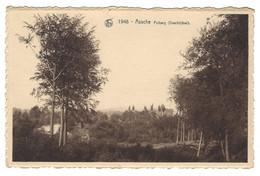 Z02 - Assche - Putberg (overblijfsel) - Asse