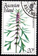 Ascension 1995 Used Sc #604 20p Leonurus Japonicus Flowers - Ascension (Ile De L')
