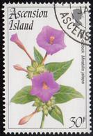 Ascension 1995 Used Sc #606 30p Four O'clock Flowers - Ascension (Ile De L')