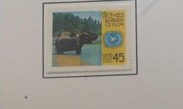 O) 1967 CEYLON, ELEPHANT AND ITY, INTERNATIONAL TOURIST YEAR, SCT 409, XF - Sri Lanka (Ceylon) (1948-...)