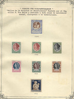 GERMANY: FIGHT AGAINST TUBERCULOSIS: Old Collection On Album Pages With More Than 500 Beautiful Cinderellas Issued Betwe - Otros
