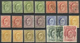 FALKLAND ISLANDS/MALVINAS: Sc.22/29, 1904/7 Edward VII, The Cmpl. Set Of 8 Values + Several Stamps In Different Shades,  - Falkland Islands