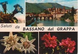 BASSANO DEL GRAPPA - VEDUTINE MULTIVUES - FIORI DI MONTAGNA STELLE ALPINE EDELWEISS - V1972 - Autres Villes