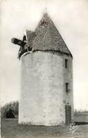 CPSM Ile D'Oléron-Un Vieux Moulin      L592 - Ile D'Oléron