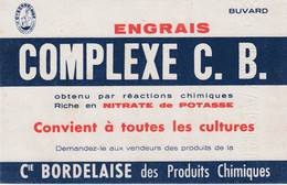 Buvard & Blotter -  Engrais Complexe C. B. - Compagnie Bordelaise Des Produits Chimiques - Nitrate De Potasse - Non Classés