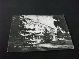 HOTEL TORINO TERME ABANO TERME PADOVA - Alberghi & Ristoranti