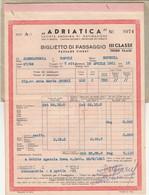 BIGLIETTO NAVIGAZIONE 1951 ADRIATICA (HB290 - Europe