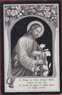 Angelina Alaerts Ludovicus Daems Messelbroek 1914 Zilverdruk Silverprint Lithographie Bidprentje Doodsprentje - Devotion Images