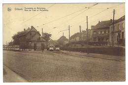 Z05 - Dilbeek - Tramstatie En Molenberg / Gare Du Tram Et Molenberg - Dilbeek