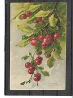 "Théme-Illustrateur- Catharina KLEIN-*Branche De CERISES "" N°;1615 - Klein, Catharina"
