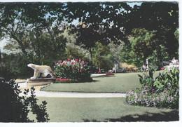 CPSM - 21 - DIJON - Jardin Darcy - 1952 - TBE - Dijon