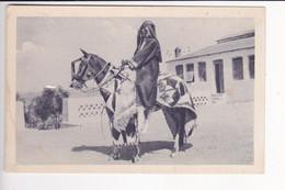 ER3  --  ERITREA  --  BARENTU CAPO DEI BARIS  --  HORSE - Eritrea