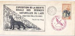 LAOS - 16 Lettresde 1954/2010 - 7 Scans - Laos
