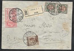 F6264  - RACCOMANDATA ESPRESSO CON MICHETTI FLOREALE - Storia Postale