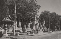 Cambodia - Phnom Penh - Pagoda Wat Botum - Cambodia
