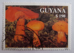 Timbre - GUYANA - 190$ -Cortinarius Callisteus - 1991 - Bel Exemplaire - Guyana (1966-...)