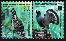 Bosnia & Herzegovina - Mostar - 2021 - Europa CEPT - Endangered National Species - Big Grouse - Mint Stamp Set - Bosnien-Herzegowina