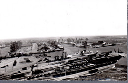 DUNKERQUE  -  CPSM  -  Panorama Du Port  -  N° 59.183.67 - Dunkerque