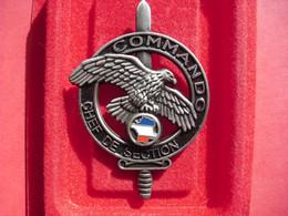 Brevet  COMMANDO    CHEF DE SECTION   ( Arthus-Bertrand ) - Army