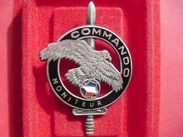 Brevet  COMMANDO    MONITEUR   ( DRAGO ) - Army