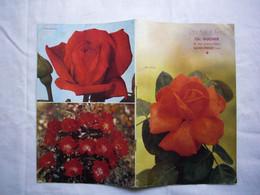 Catalogue Pub Aux Roses De Lyon Années 1960 Rosiériste Charles Ducher Saint-Priest 38 - Pubblicitari